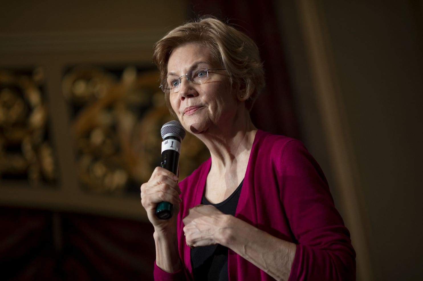 Elizabeth Warren, Politician and Academic