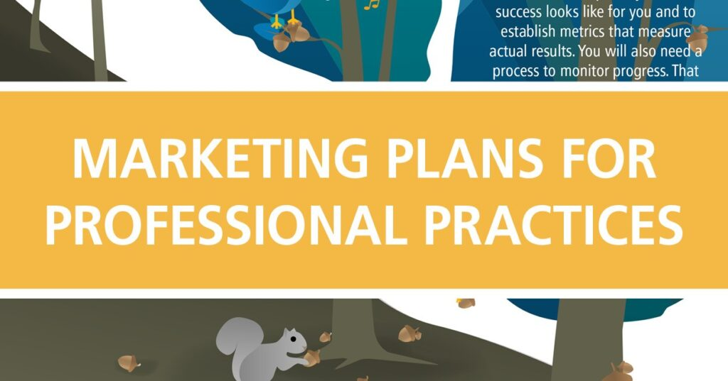 marketing plans for professional practices